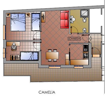 planimetria Camelia Cattolica